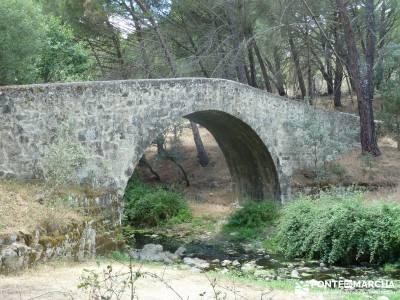 Paseo y Baño por el Valle y Río Tiétar;bosque en madrid toledo rutas ruta senderismo